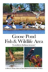 Goose Pond Fish & Wildlife Area: A Southern Indiana Treasure
