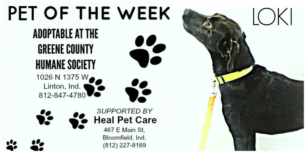 Pet of the Week 10-1
